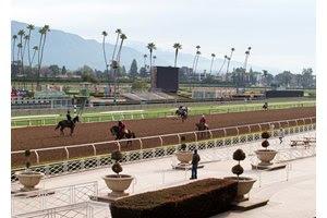 Horses train at Santa Anita Park