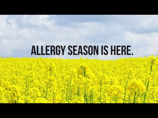Allergy Medicine Actually Shrinks Your Brain!  Sddefault