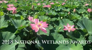 National Wetlands Awards