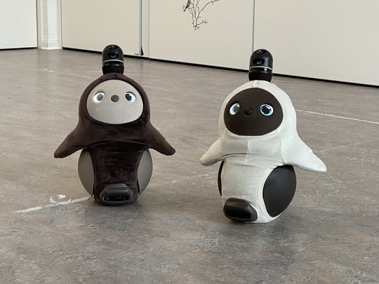 De soiale robotter Mikel og Hanne.jpeg