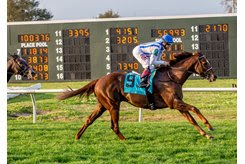 Synchrony gallops home in the Fair Grounds Handicap at Fair Grounds Race Course