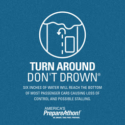 Turn Around, Don't Drown Infographic
