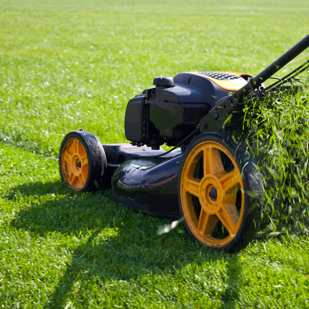 TIPS - August - Summer Maintenance Myths