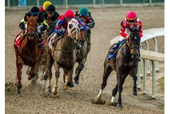 Serengeti Empress goes gate-to-wire to win the Rachel Alexandra Stakes at Fair Grounds
