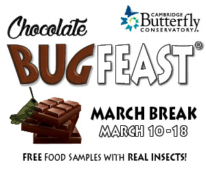 BugFeast2018-250x250