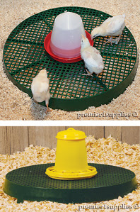 Poultry Chick Stand used for feeding and watering
