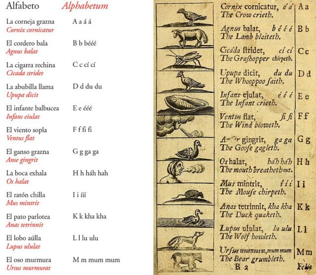 Página de Orbis Pictus