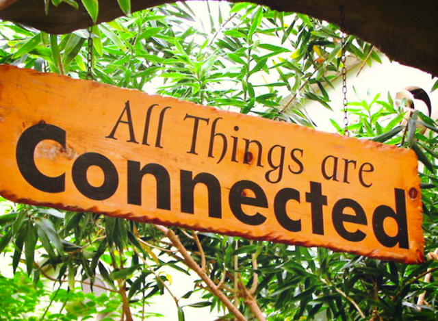 Image result for all things are connected