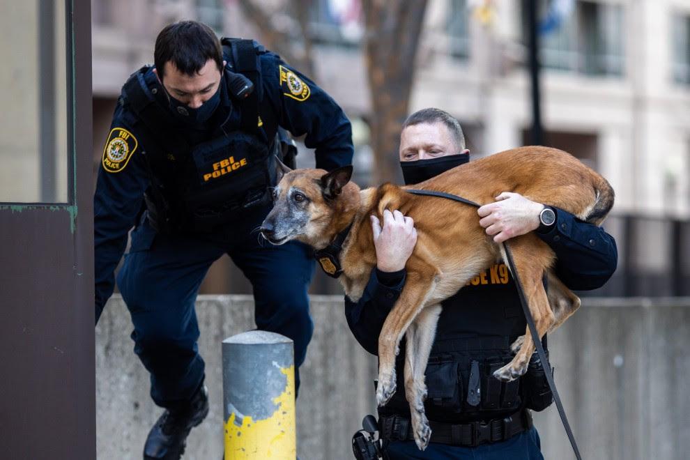 Los miembros del equipo canino de la Oficina Federal de Investigaciones (FBI) saltan por encima de una pared en el edificio de la sede del FBI, durante los preparativos para la próxima toma de posesión del presidente electo Joe Biden