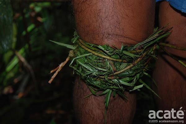 Aplicação de medicina tradicional dos Matsés. Foto: Acaté
