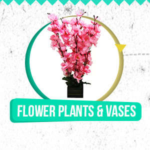 Flower Plants and Vases