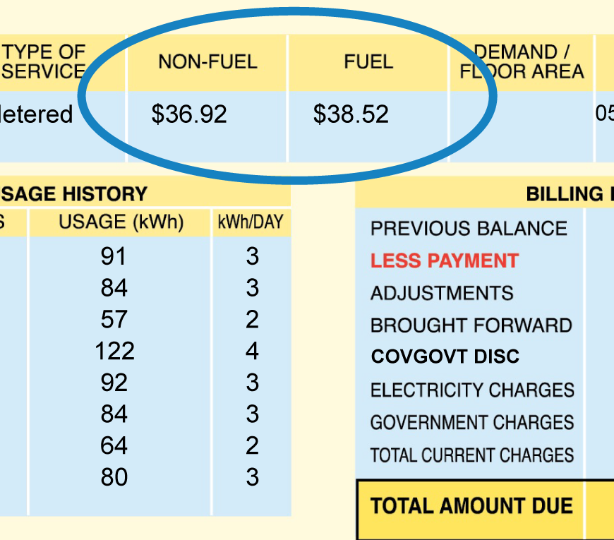 fuel and non-fuel amounts