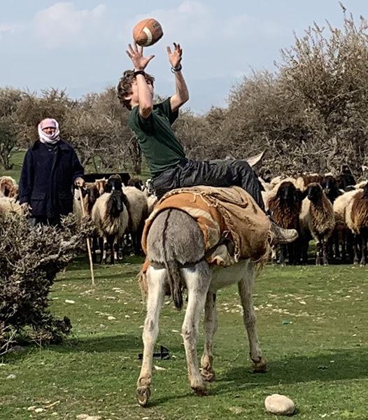 Donkey bóng đá