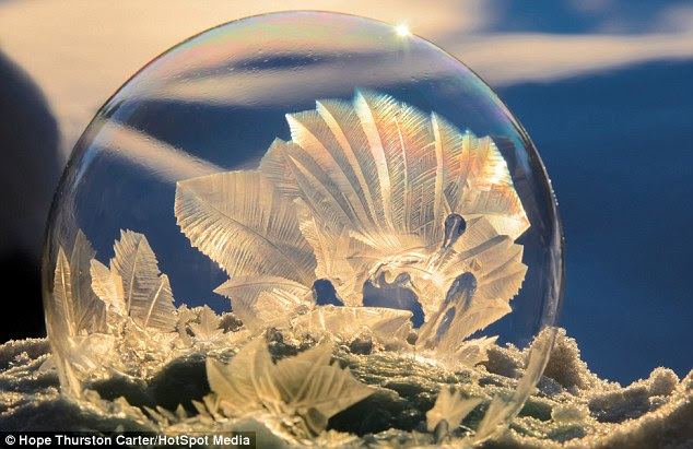 Shapes: The                                                  incredible patterns in                                                  the bubbles form as ice                                                  crystals spread across                                                  their surfaces