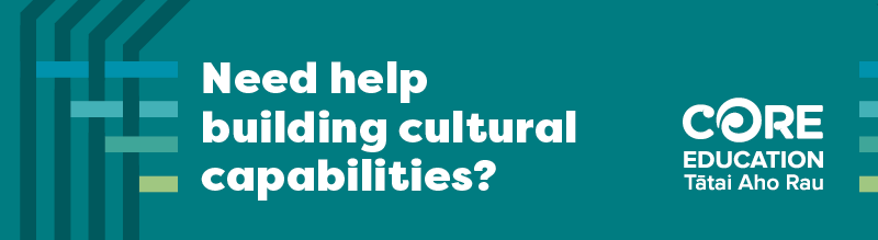 Need help building cultural capabilities?
