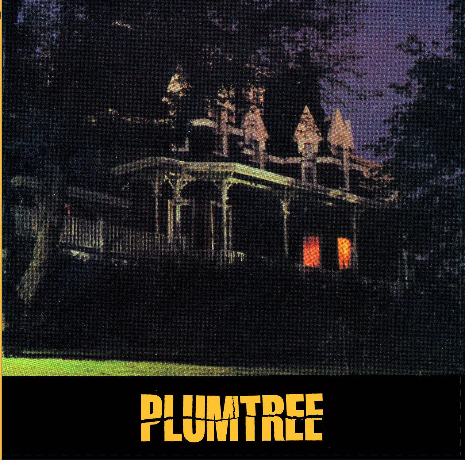 Plumtree Mass Teen Fainting album cover