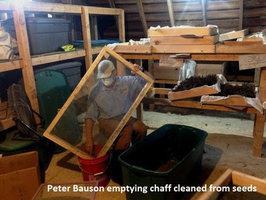 Peter Bauson emptying chaff cleaned