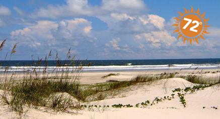 Image of Cumberland Island National Seashore, GA
