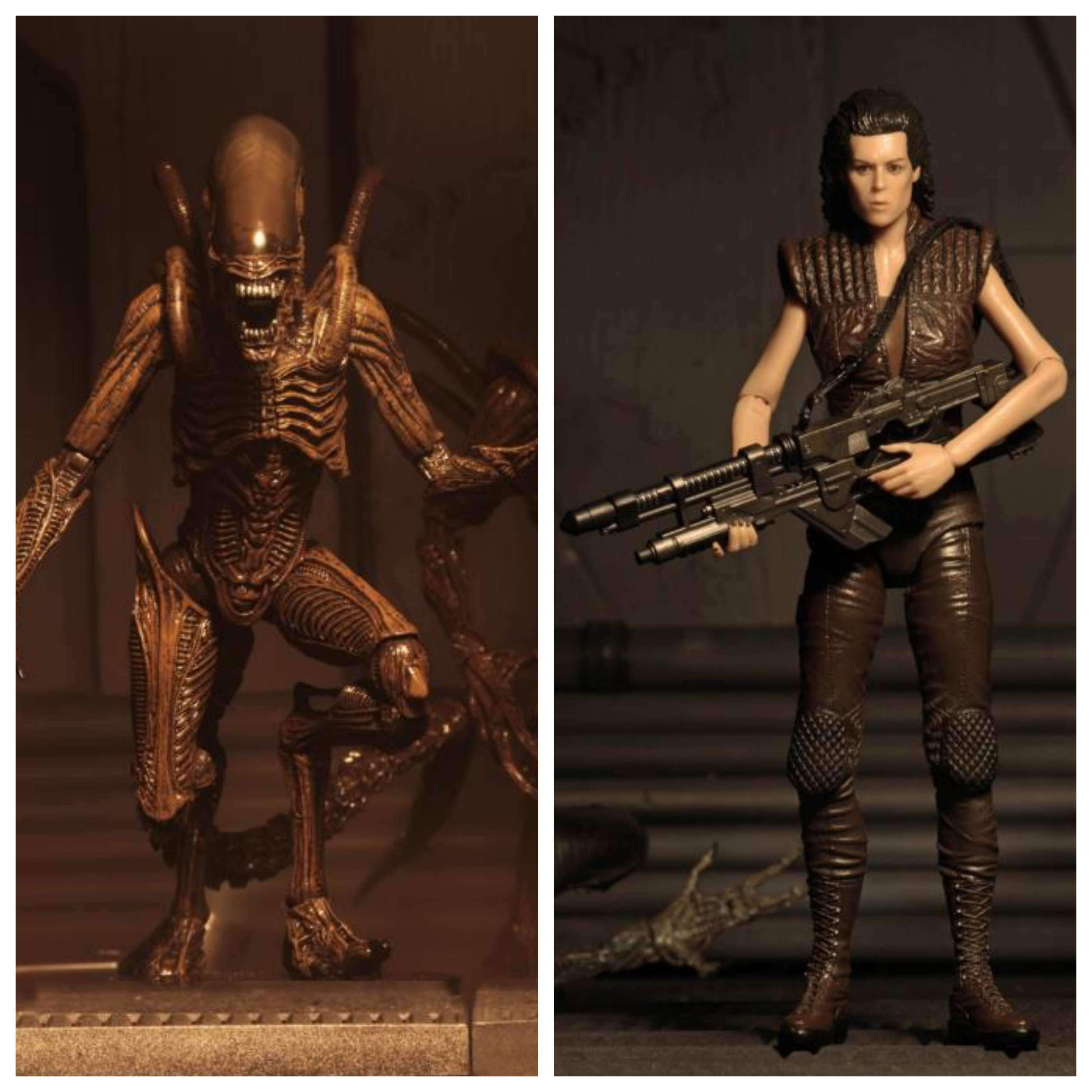 Image of Alien Resurrection Series 14 Set of 2 Figures