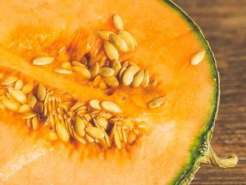 Perú exportó semillas de melón por US$ 8.2 millones en primer semestre de 2021