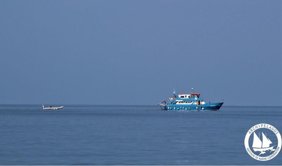 Aegean Explorer Risso s Ikaria