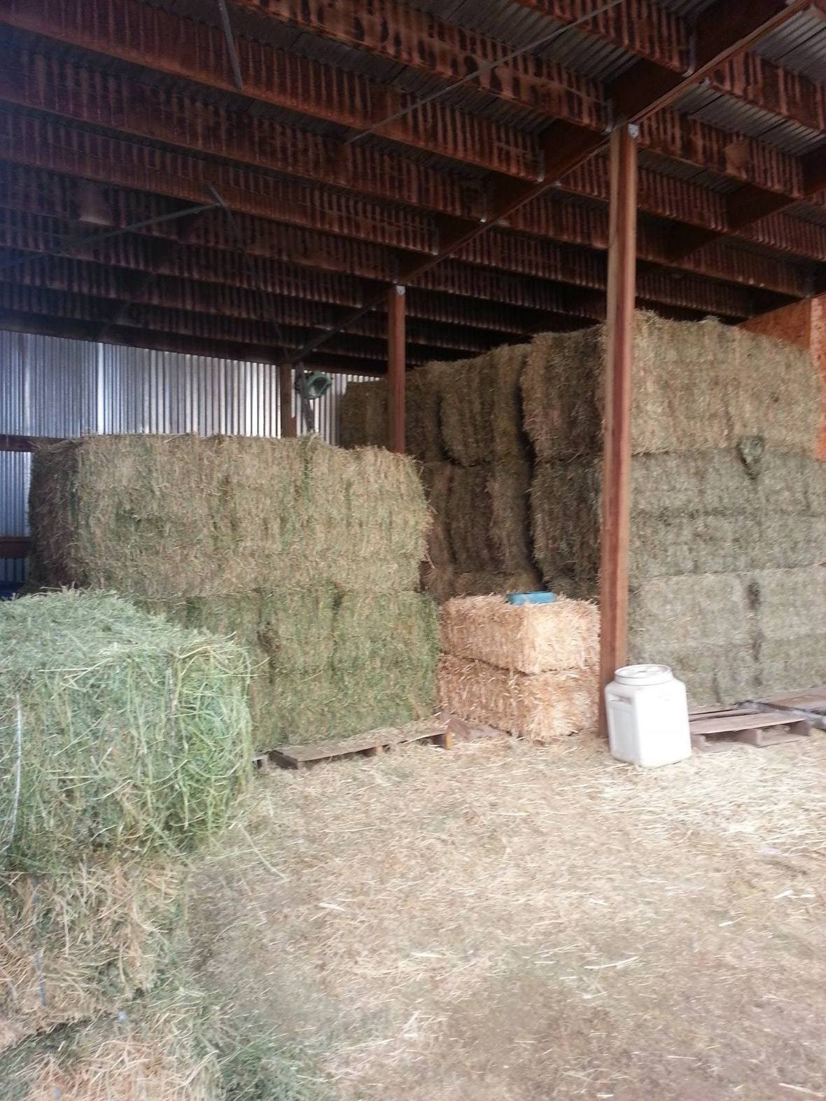 20150322 hay purchased